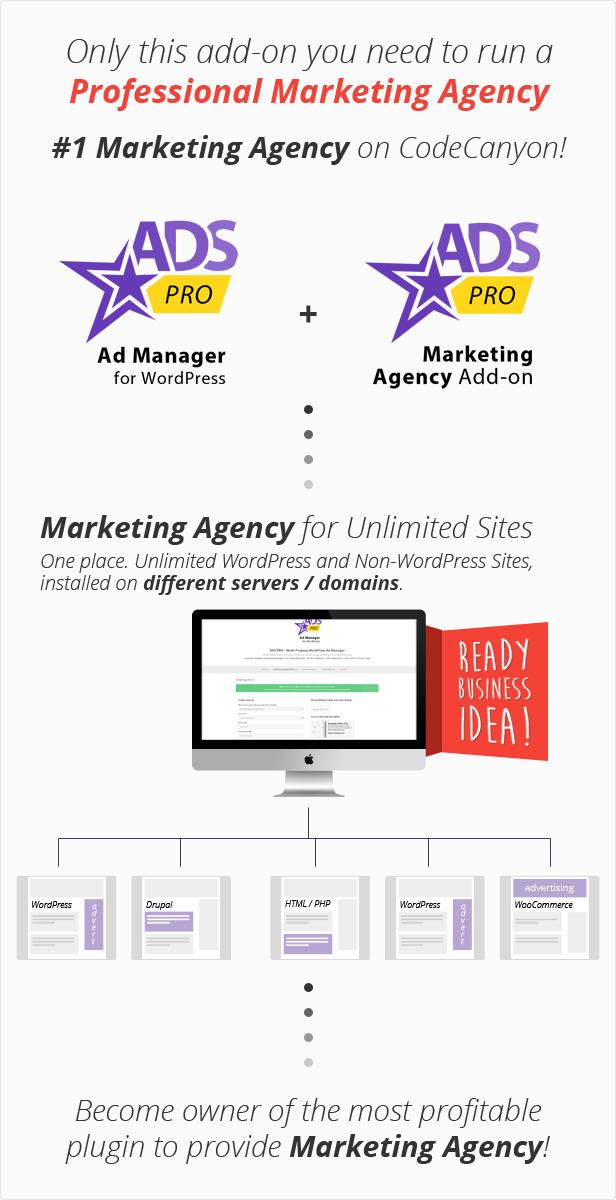 Complemento Ads Pro - Agencia de marketing de WordPress - 2