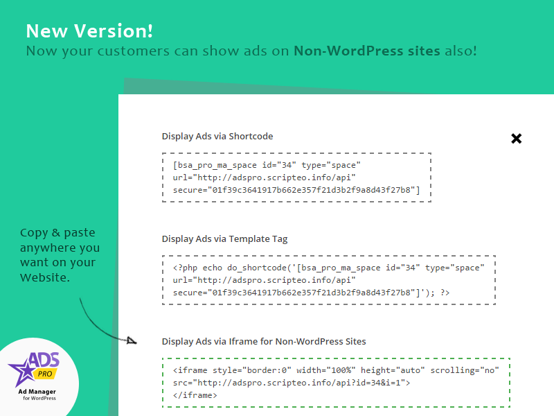 Complemento Ads Pro - Agencia de marketing de WordPress - 1